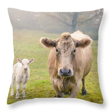 Momma And Baby Cow Throw Pillow