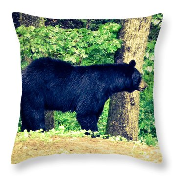 Momma Bear Throw Pillow by Jan Dappen