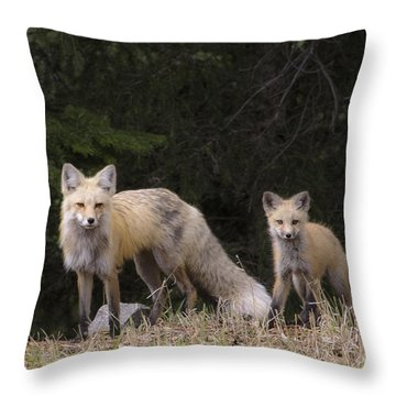 Momma Fox With Her Kit Throw Pillow by Sonya Lang