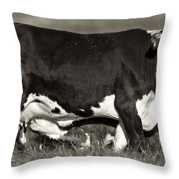 Momma Throw Pillow by Patrick M Lynch