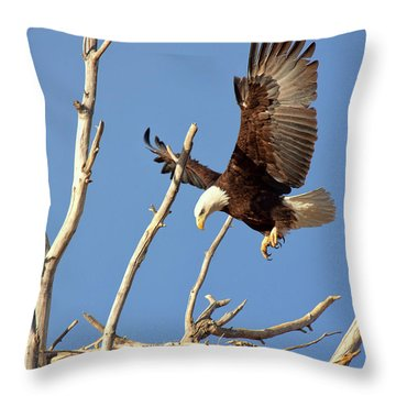 Mommas' Home Throw Pillow