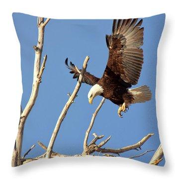 Mommas' Home Throw Pillow