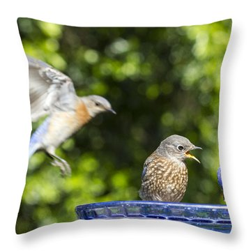 Moms Coming Throw Pillow by Jean Noren