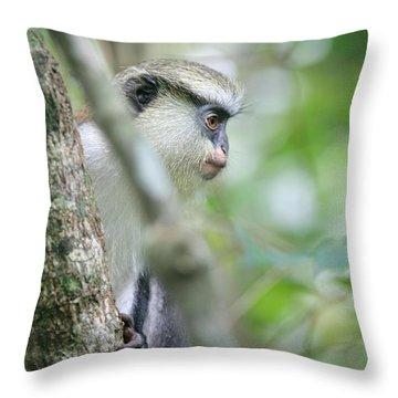 Mona Monkeys In Ghana Throw Pillow