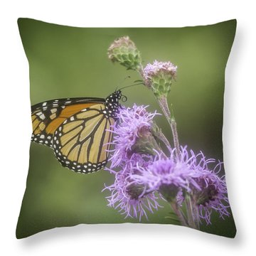Monarch And My Blazing Star Throw Pillow
