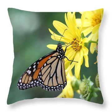 Throw Pillow featuring the photograph Monarch Beauty by Doris Potter