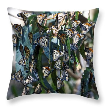 Monarch Butterflies Natural Bridges Throw Pillow