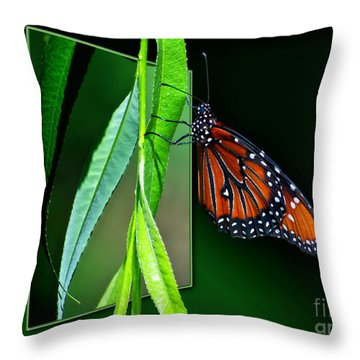 Monarch Butterfly 04 Throw Pillow by Thomas Woolworth