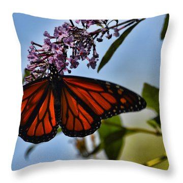 Monarch Butterfly #1 Throw Pillow