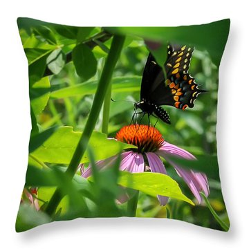 Monarch Butterfly Deep In The Jungle Throw Pillow