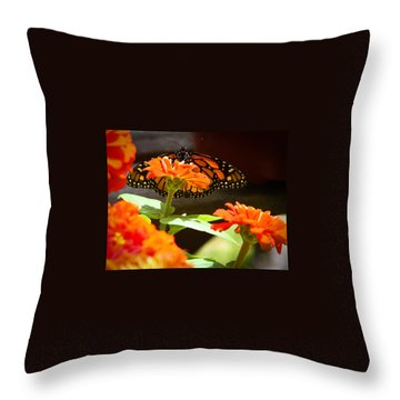 Monarch Butterfly II Throw Pillow by Patrice Zinck