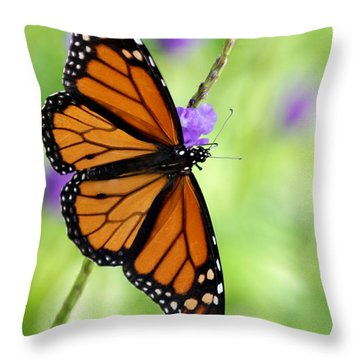 Monarch Butterfly In Spring Throw Pillow