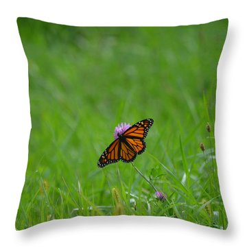 Throw Pillow featuring the photograph Monarch Butterfly by James Petersen
