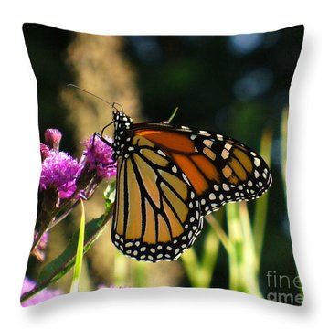 Throw Pillow featuring the photograph Monarch Butterfly by Lingfai Leung