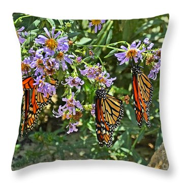 Monarch Butterfly Trio Throw Pillow by Susan Wiedmann