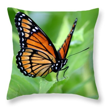 Monarch Dreaming  Throw Pillow by Neal Eslinger