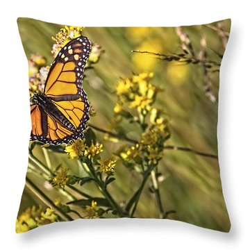 Monarch Hatch Throw Pillow