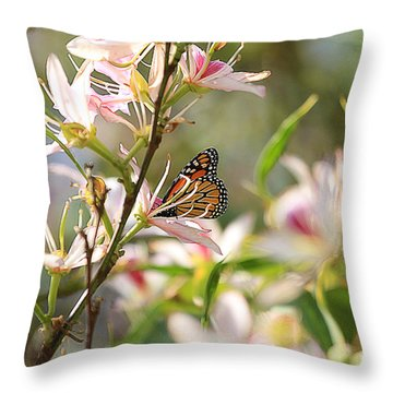 Throw Pillow featuring the photograph Monarch by Kevin Ashley