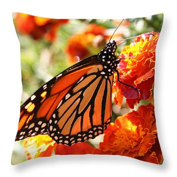 Monarch On Marigold Throw Pillow