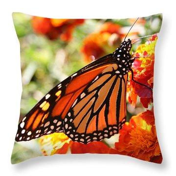 Monarch On Marigold Throw Pillow