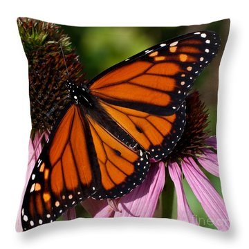 Throw Pillow featuring the photograph Monarch On Purple Coneflower by Barbara McMahon