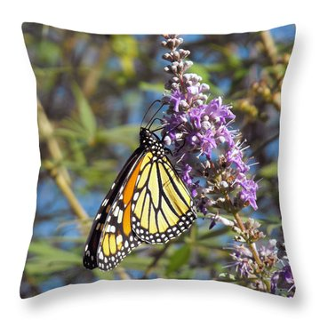 Throw Pillow featuring the photograph Monarch On Vitex by Jayne Wilson