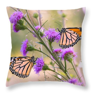 Monarch Pair Throw Pillow