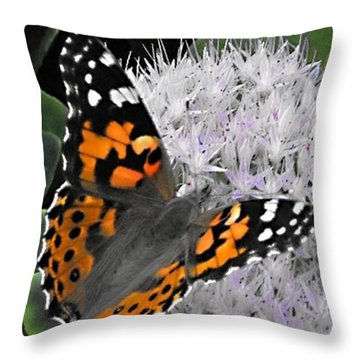 Throw Pillow featuring the photograph Monarch by Photographic Arts And Design Studio
