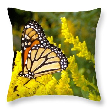 Throw Pillow featuring the photograph Monarch by Sara  Raber