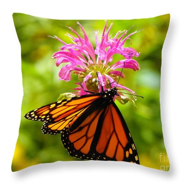 Monarch Under Flower Throw Pillow