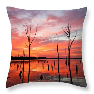 Monday Morning Throw Pillow by Roger Becker