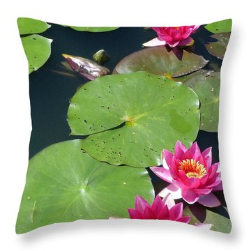 Monet's Waterlilies IIi Throw Pillow