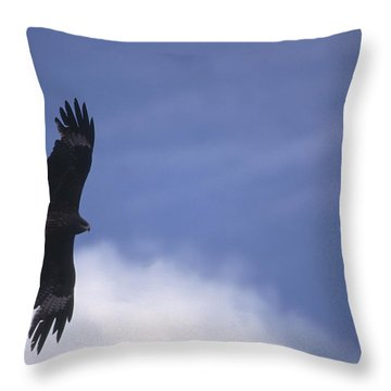 Mongolia Throw Pillow by Anonymous