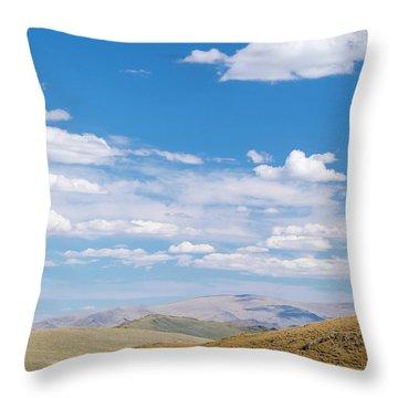 Altai Throw Pillows