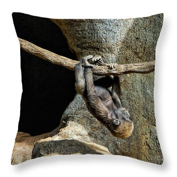 Monkey Business Throw Pillow by Kathleen K Parker