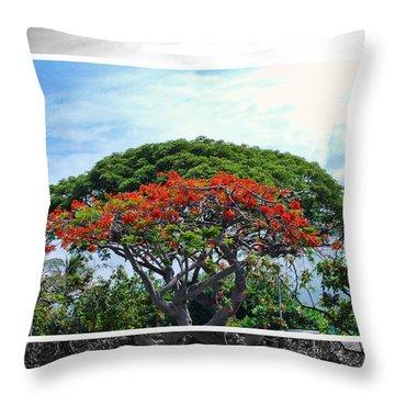 Monkey Pod Trees - Kona Hawaii Throw Pillow