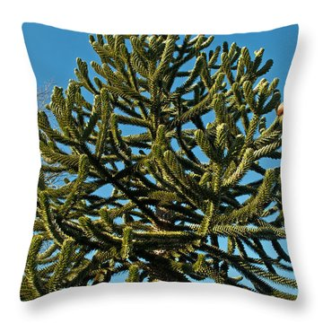 Monkey Puzzle Tree E Throw Pillow by Tikvah's Hope