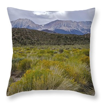 Mono Basin Lee Vining 1 Throw Pillow