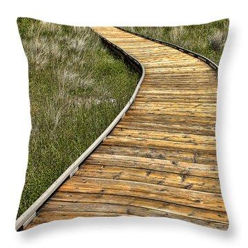 Mono Lake Boardwalk 2 Throw Pillow