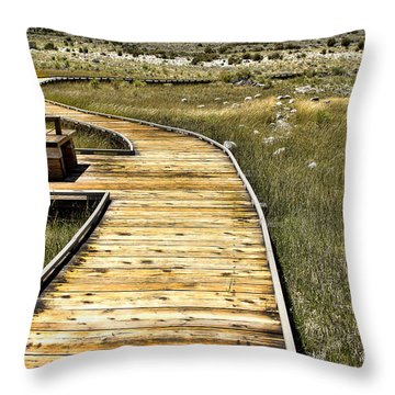Mono Lake Boardwalk  Throw Pillow