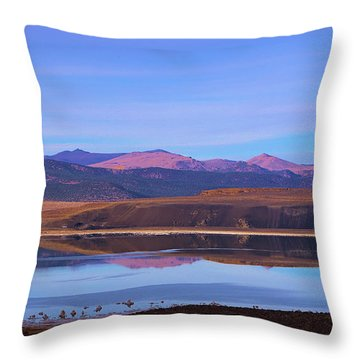 Mono Lake In Soft Sunset Throw Pillow