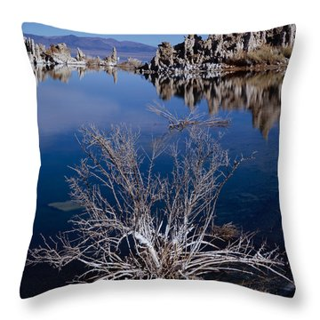 Mono Lake Salt Bush Throw Pillow