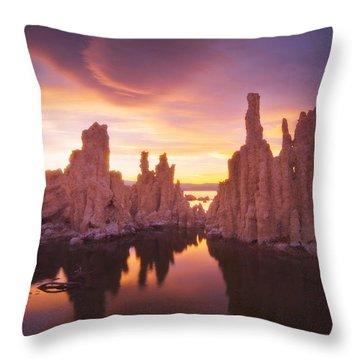 Mono Magic Throw Pillow by Peter Coskun