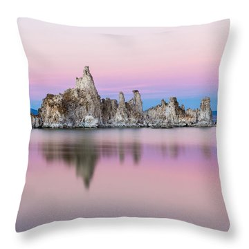 Mono Pastels Throw Pillow