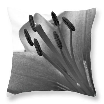 Throw Pillow featuring the photograph Monochrome Asian Lily by Anita Oakley