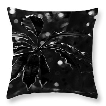 Monochrome Leaf  Throw Pillow