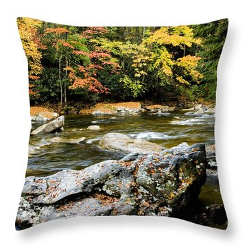 Monongahela National Forest Cranberry River Throw Pillow by Thomas R Fletcher