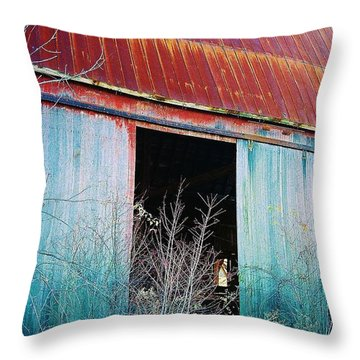 Throw Pillow featuring the photograph Monroe Co. Michigan Barn by Daniel Thompson