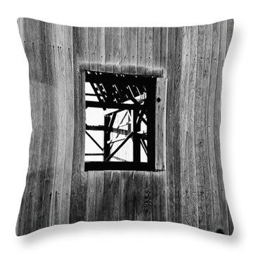 Throw Pillow featuring the photograph Monroe Co. Michigan Barn Window by Daniel Thompson