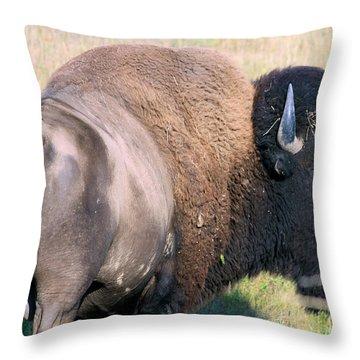 Montana Buffalo Bison Bull Throw Pillow by Karon Melillo DeVega